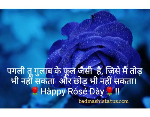 Rose-Day-Status-in-Hindi