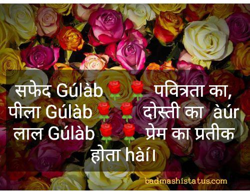 Rose-Status-in-Punjabi