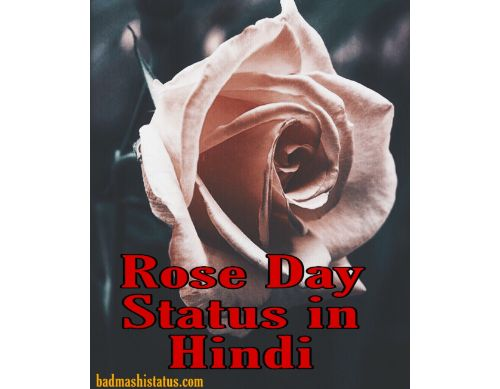 Rose Day Status in Hindi – Happy Rose Day Status, Wishes, Greetings