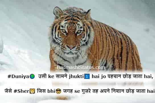 Sher-Status-in-Hindi