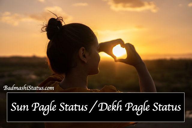 Best 99+ Sun Pagle Status 2020 – Dekh Pagle Status in Hindi